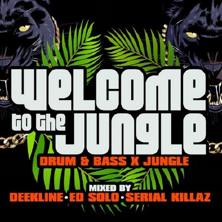 Welcome to the Jungle (Drum and Bass X Jungle) (2018)