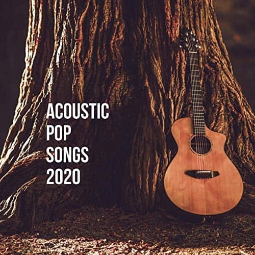 Acoustic Pop Songs 2020 (2020) FLAC