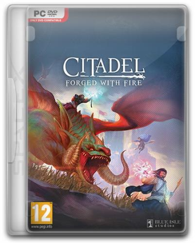 Citadel: Forged with Fire [v 27977] (2019) PC | RePack от SpaceX