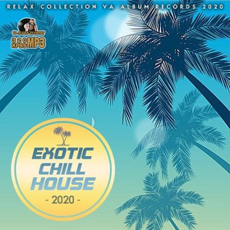 Exotic Chill House (2020)